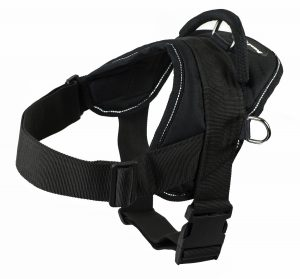 Boxer Harness