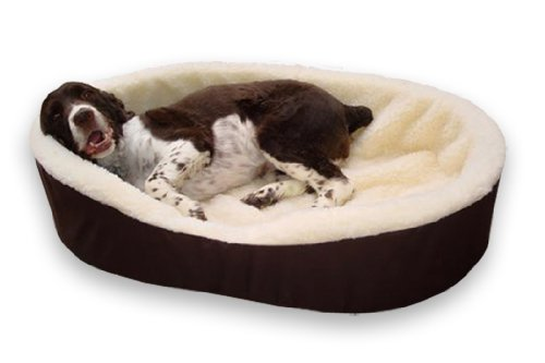 best dog bed for boxer