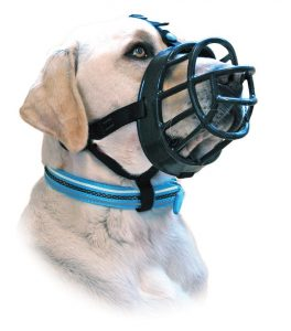 Dog Muzzle For Boxer